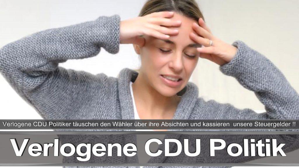 Bundestagswahl 2017 Wahlplakat Angela Merkel CDU CSU SPD AFD NPD (3)