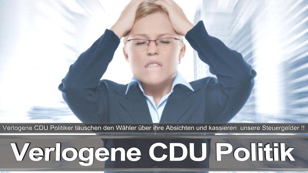 Bundestagswahl 2017 Wahlplakat Bundestagswahl 2017 Umfrage Stimmzettel Angela Merkel CDU CSU SPD AFD NPD (4)