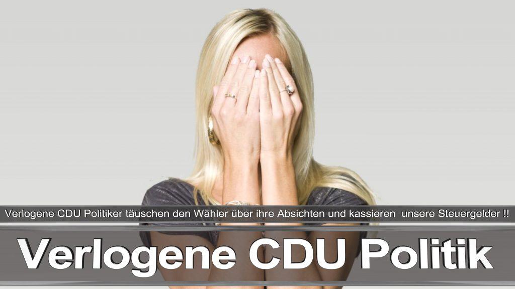 Bundestagswahl 2017 Wahlplakat Angela Merkel CDU CSU SPD AFD NPD (5)