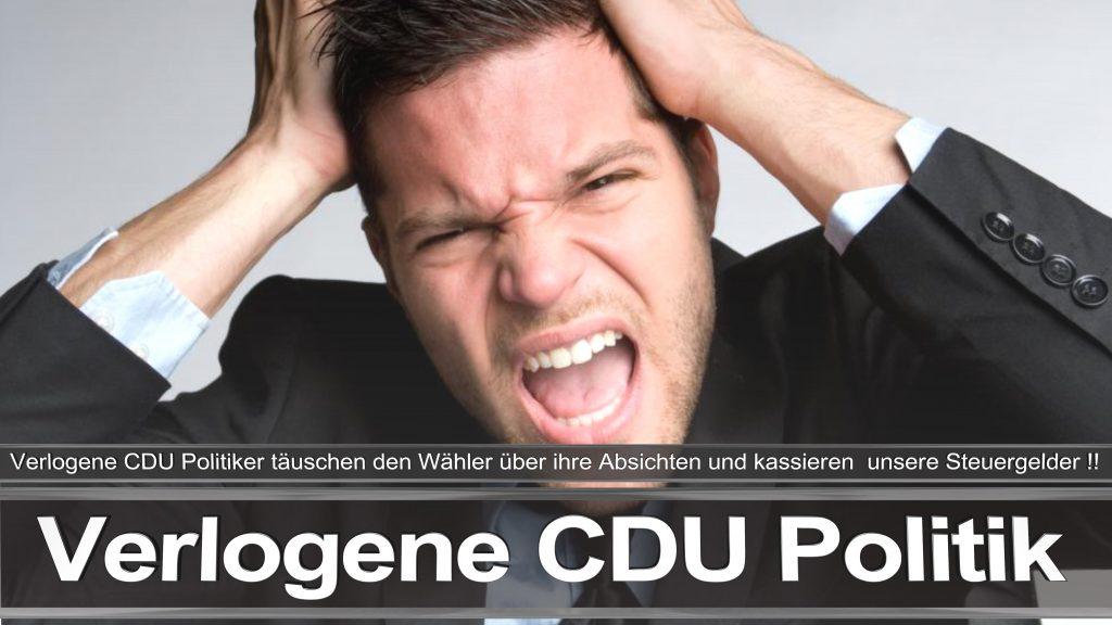 Bundestagswahl 2017 Wahlplakat Bundestagswahl 2017 Umfrage Stimmzettel Angela Merkel CDU CSU SPD AFD NPD (6)