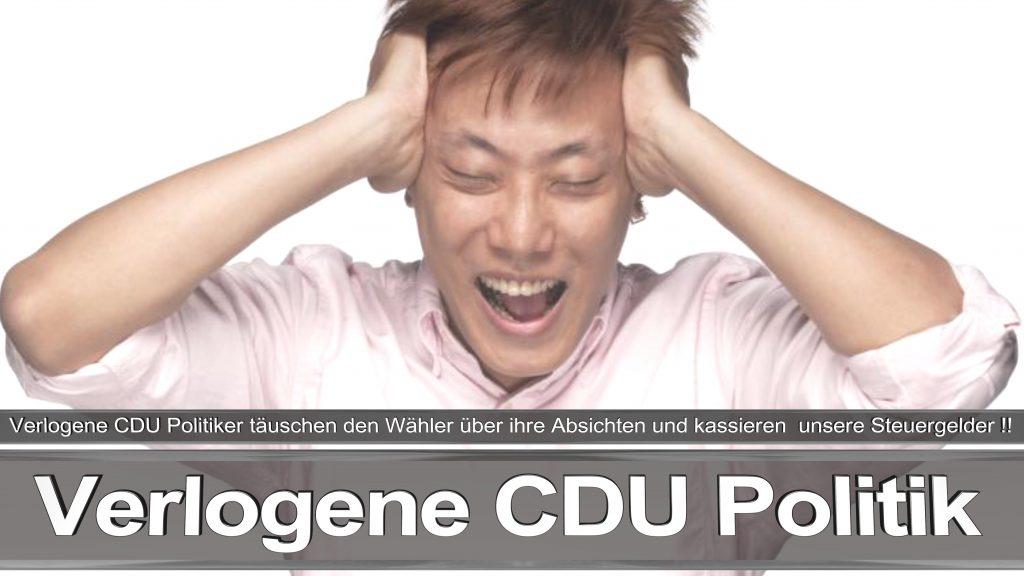 Bundestagswahl 2017 Wahlplakat Angela Merkel CDU CSU SPD AFD NPD (8)