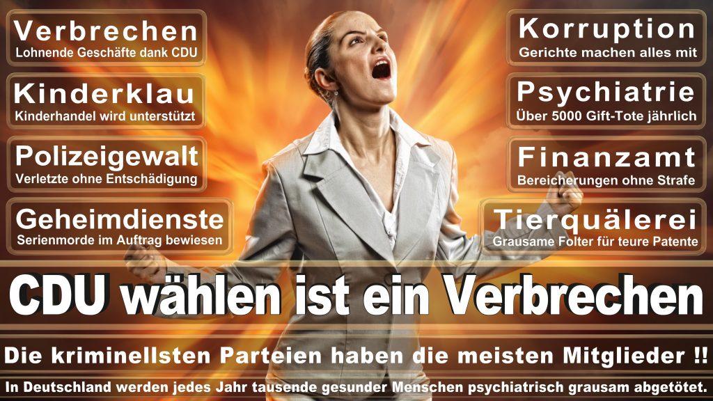 CDU Wahlplakate 2017 Angela Merkel Kundgebung Interview Europawahl CDU SPD FDP AFD NPD (1)