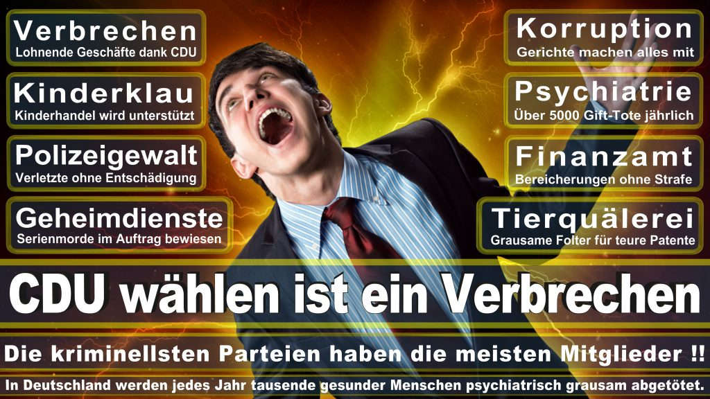 CDU Wahlplakate 2017 Angela Merkel Kundgebung Interview Europawahl CDU SPD FDP AFD NPD (10)