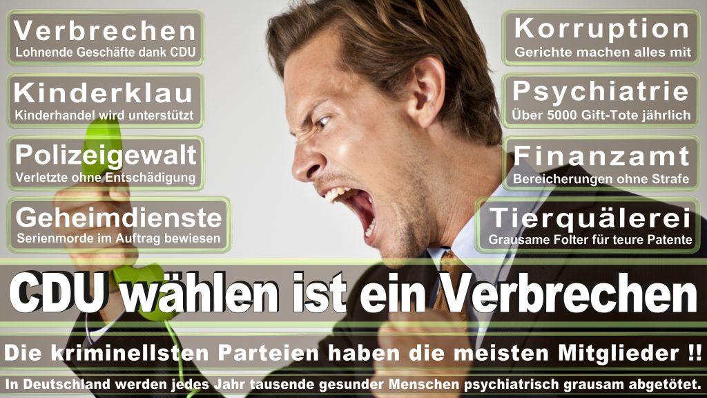 CDU Wahlplakate 2017 Angela Merkel Kundgebung Interview Europawahl CDU SPD FDP AFD NPD