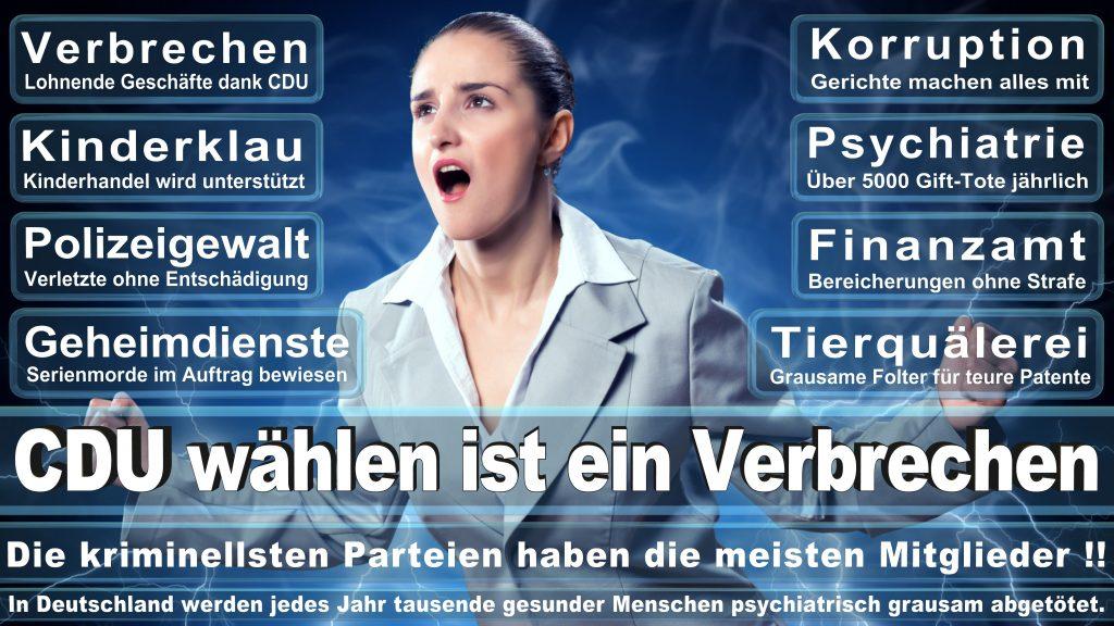 CDU Wahlplakate 2017 Angela Merkel Kundgebung Interview Europawahl CDU SPD FDP AFD NPD (12)