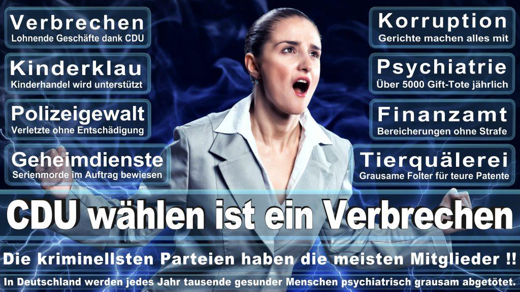 CDU Wahlplakate 2017 Angela Merkel Kundgebung Interview Europawahl CDU SPD FDP AFD NPD (13)