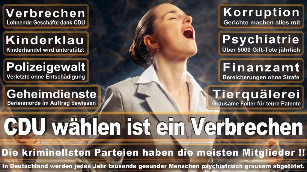 CDU Wahlplakate 2017 Angela Merkel Kundgebung Interview Europawahl CDU SPD FDP AFD NPD (17)