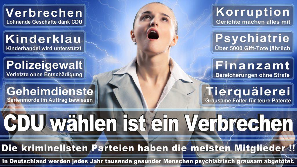 CDU Wahlplakate 2017 Angela Merkel Kundgebung Interview Europawahl CDU SPD FDP AFD NPD (19)