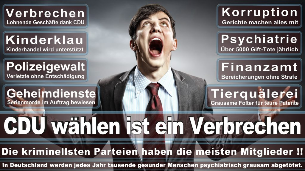 CDU Wahlplakate 2017 Angela Merkel Kundgebung Interview Europawahl CDU SPD FDP AFD NPD (2)