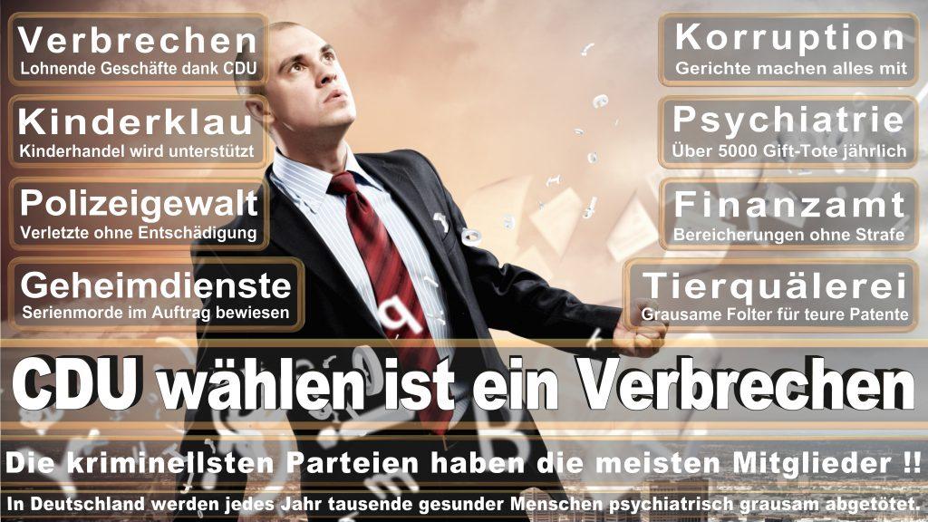 CDU Wahlplakate 2017 Angela Merkel Kundgebung Interview Europawahl CDU SPD FDP AFD NPD (24)