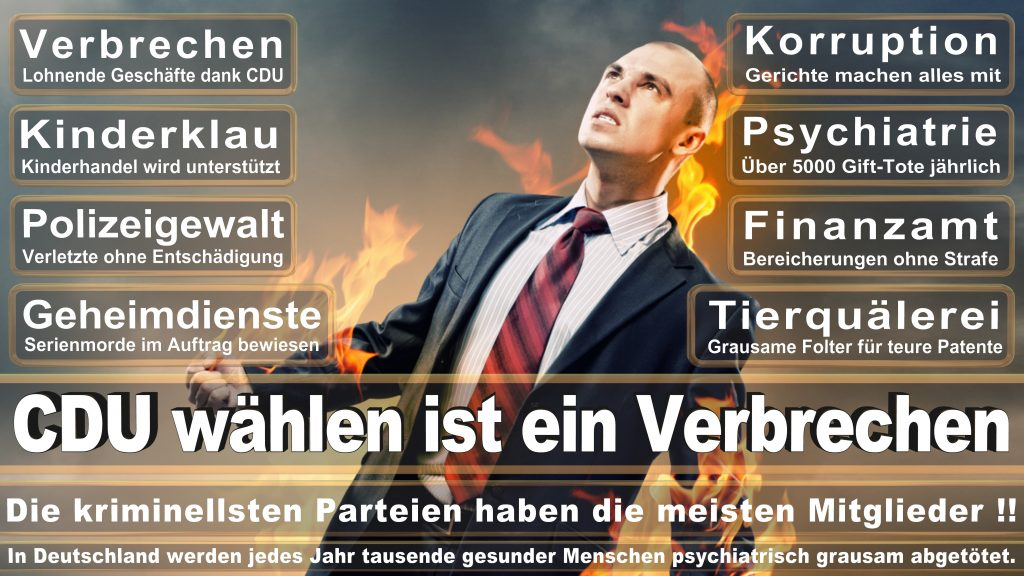 CDU Wahlplakate 2017 Angela Merkel Kundgebung Interview Europawahl CDU SPD FDP AFD NPD (25)