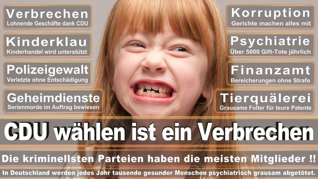 CDU Wahlplakate 2017 Angela Merkel Kundgebung Interview Europawahl CDU SPD FDP AFD NPD (26)