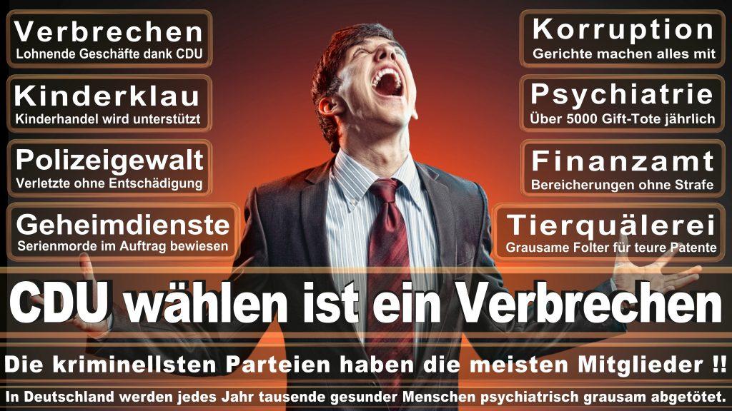 CDU Wahlplakate 2017 Angela Merkel Kundgebung Interview Europawahl CDU SPD FDP AFD NPD (5)