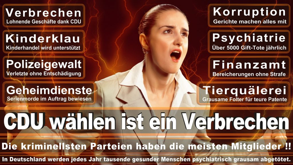 CDU Wahlplakate 2017 Angela Merkel Kundgebung Interview Europawahl CDU SPD FDP AFD NPD (8)