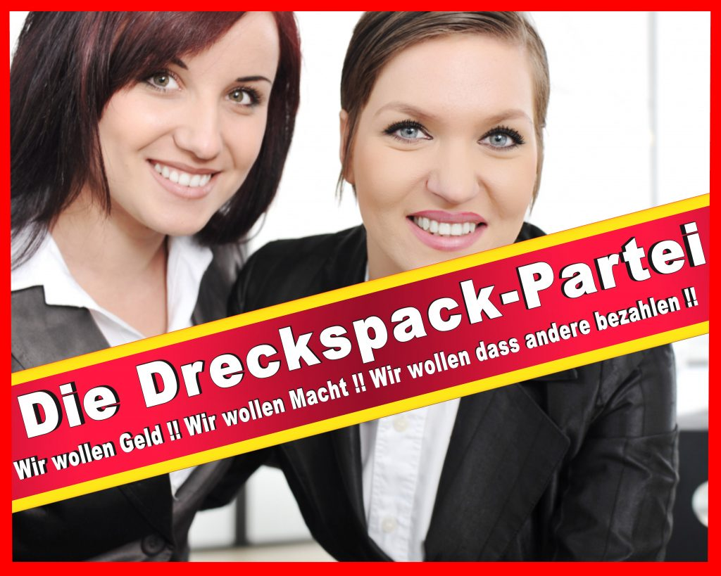 Wahlplakate 2016 2017 2011 Wesselmann Wesselmänner CDU SPD FDP Stimmzettel (25)